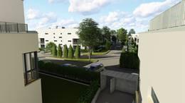 Gergely Garden